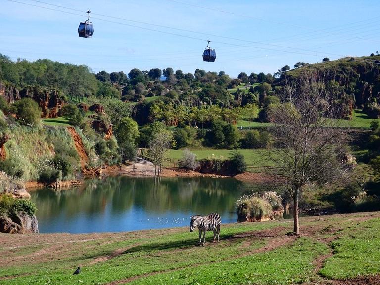 Parque Natural de Cabárceno: una reserva natural sorprendente en el corazón de Cantabria